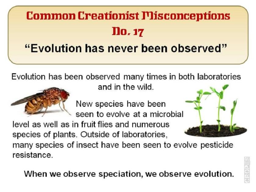 EvolutioninAction