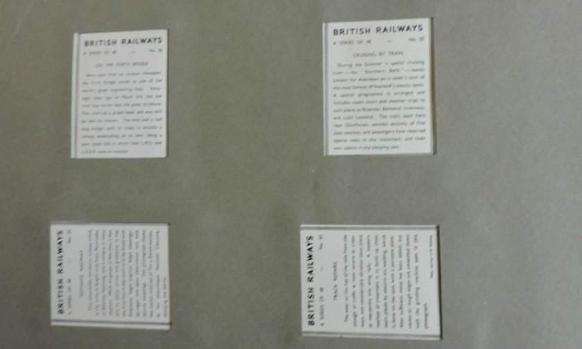 DSCN6498
