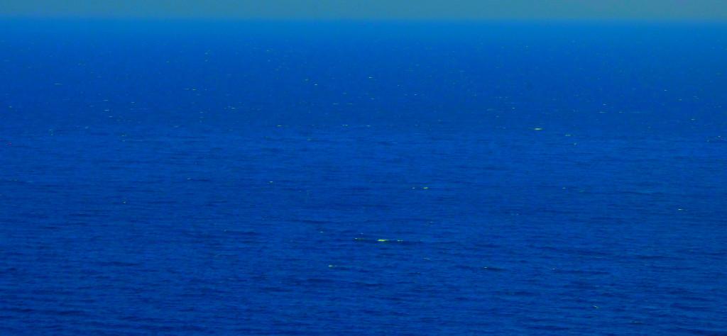 North Sea 10