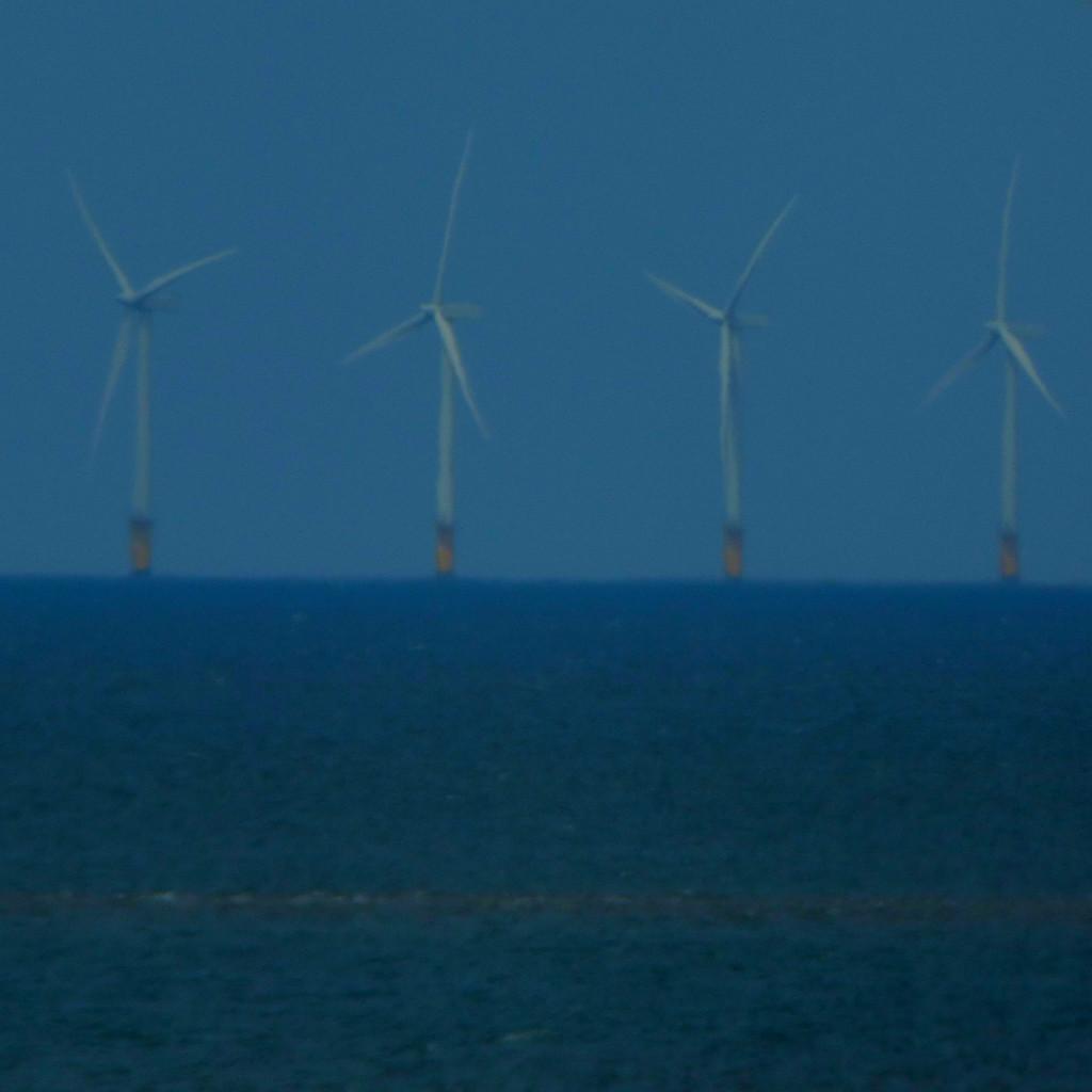 Renewable Emergy4