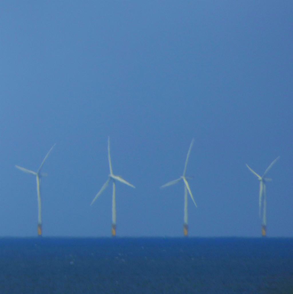Renewable energy 5