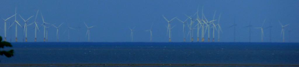 Renewable energy 6