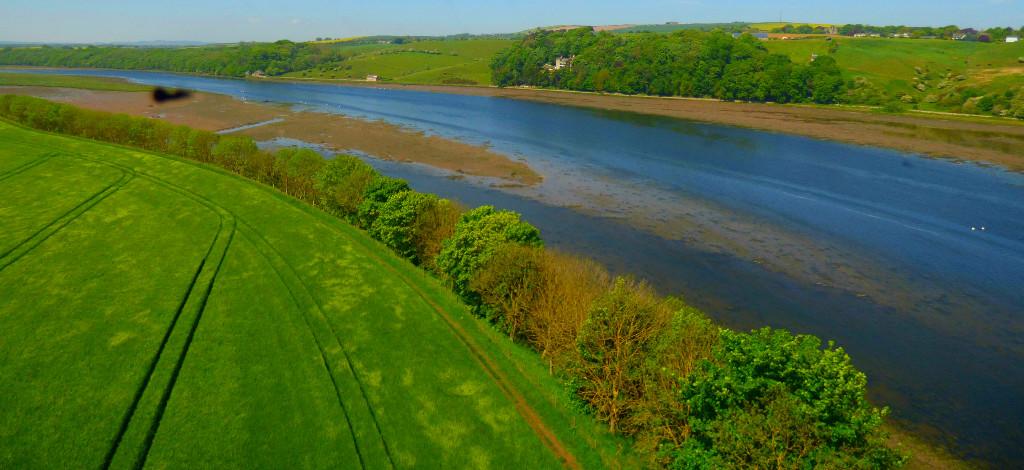 River Tyne4