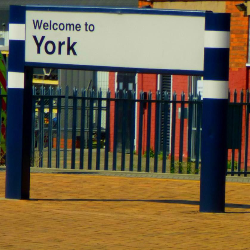 York5