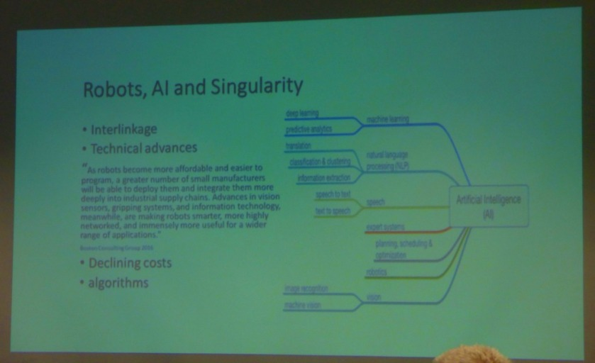 Robots, AI and singularities