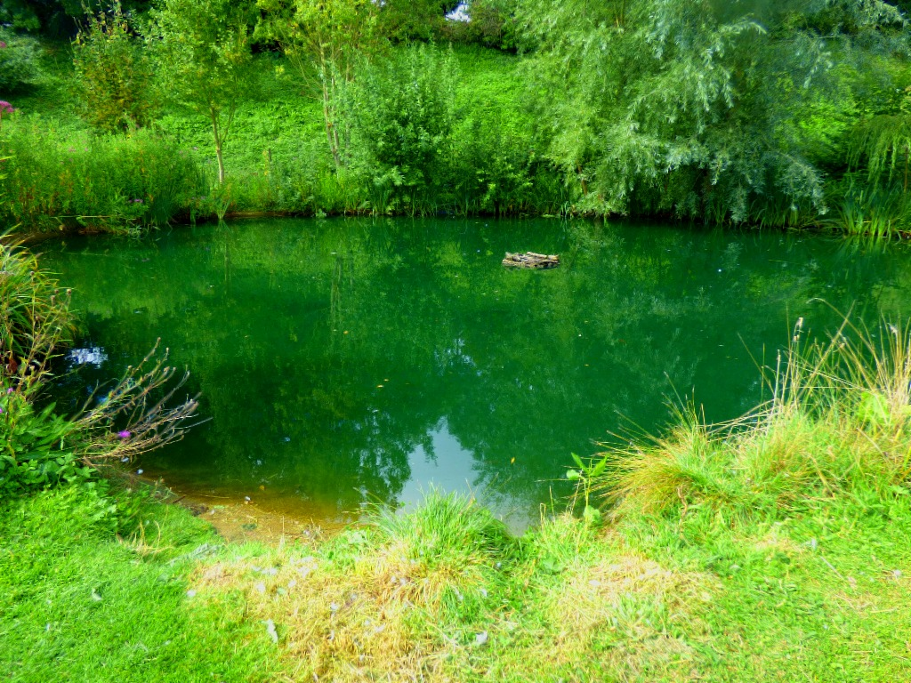 Pond2