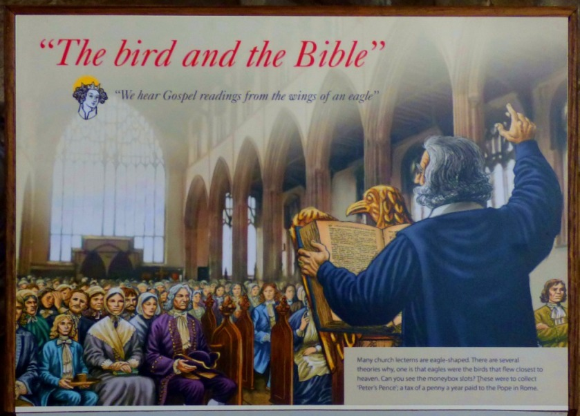 bird and bible 2