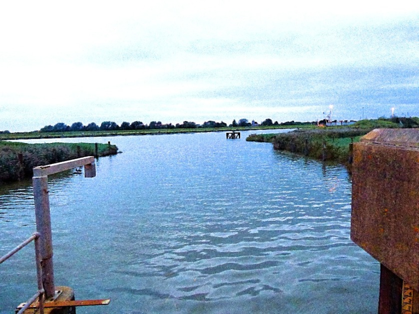 Nar meets Ouse, high tide