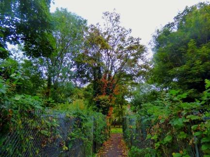Towards Kettlewell Lane