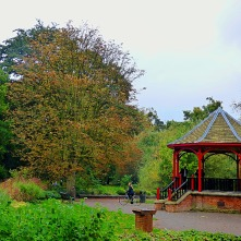 tree and bandstand
