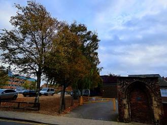 Tree and ruin