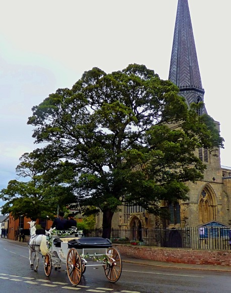Tree and St Nicks