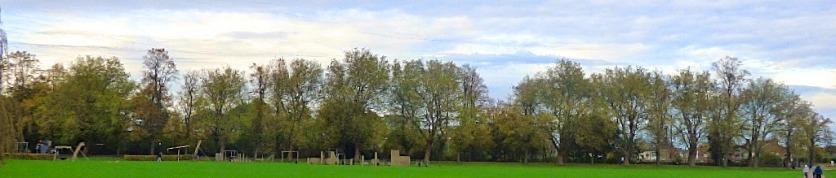 Tree Wall 5