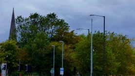 Trees, Norfolk Street