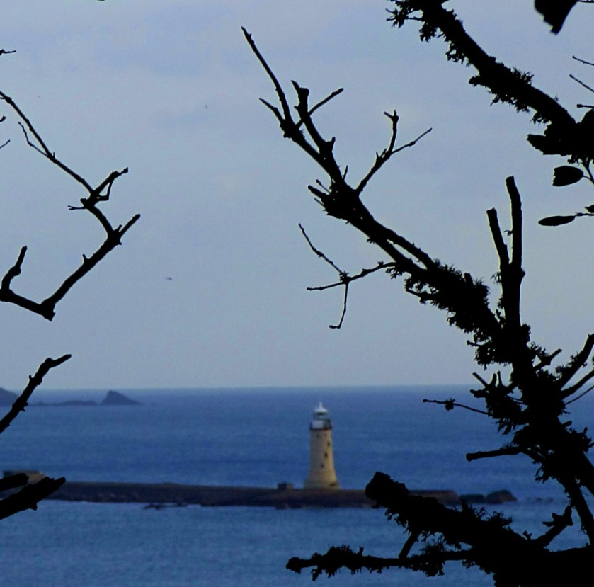 Lighthouse and branches
