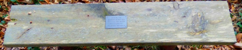 Mildred Brimble bench