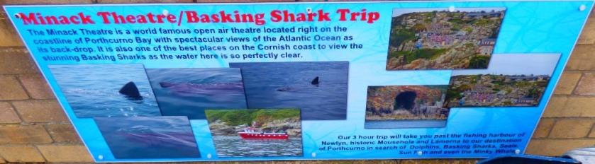 Shark Trip