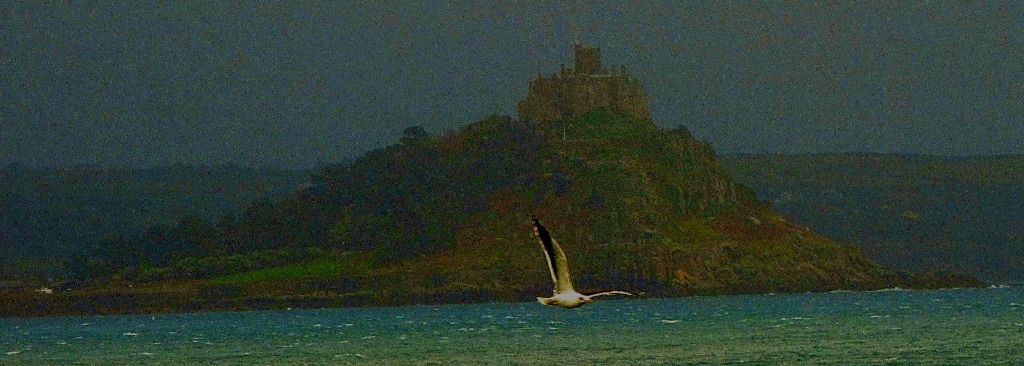 St Michael's Mount and Flying Gull