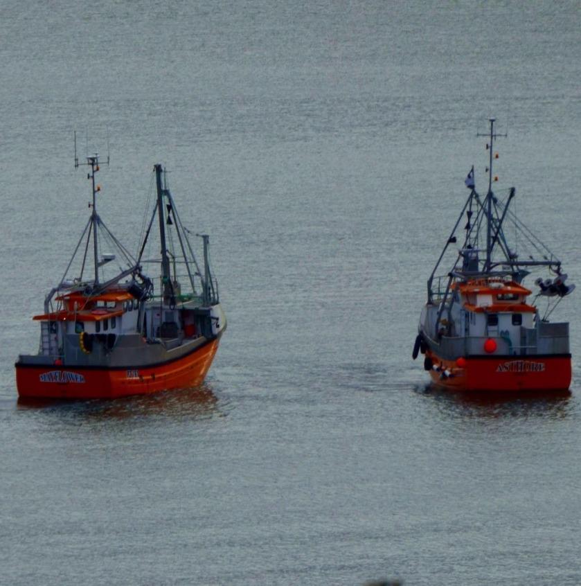 two orange ships