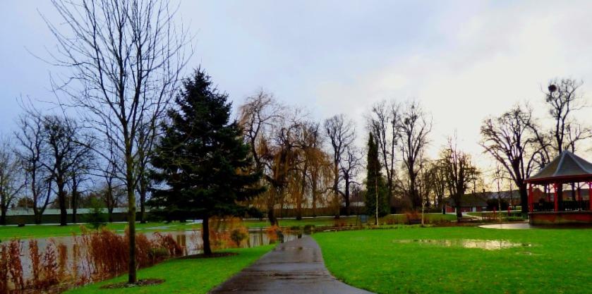 Vancouver Garden 3