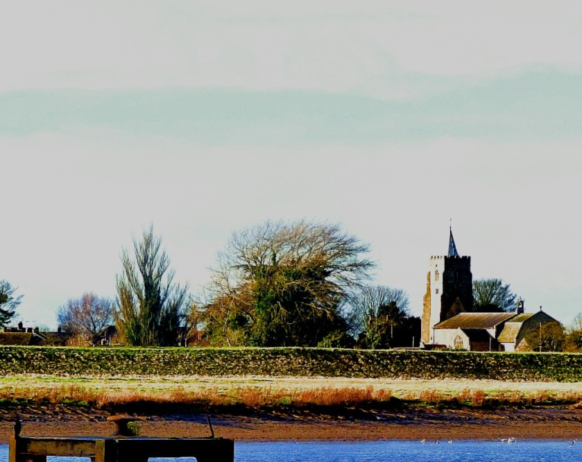 Cormorant and church