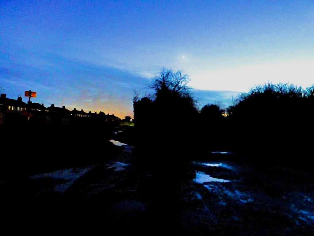 Moonlit North Lynn
