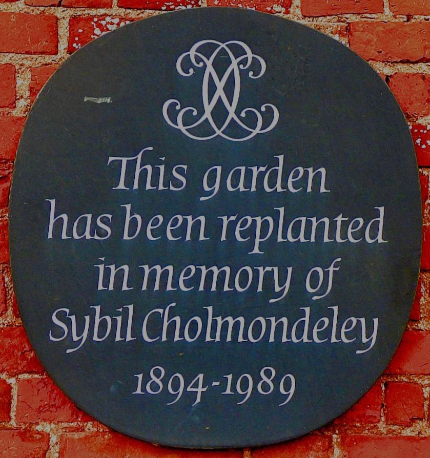 SC plaque
