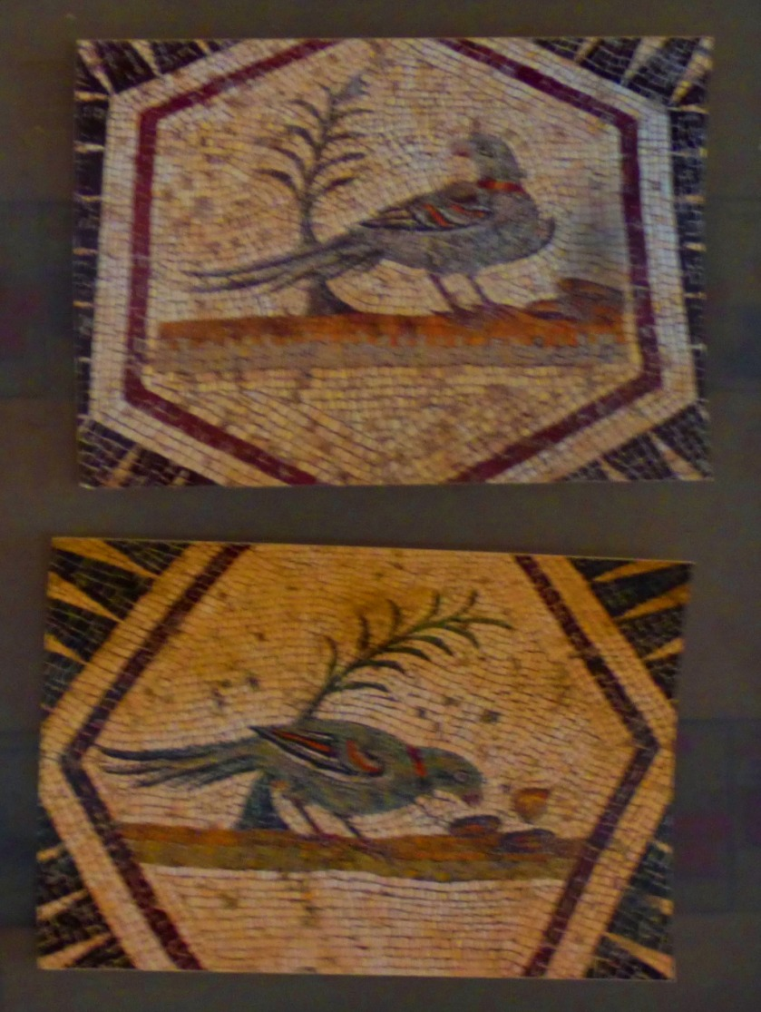 bird mosaic photographs