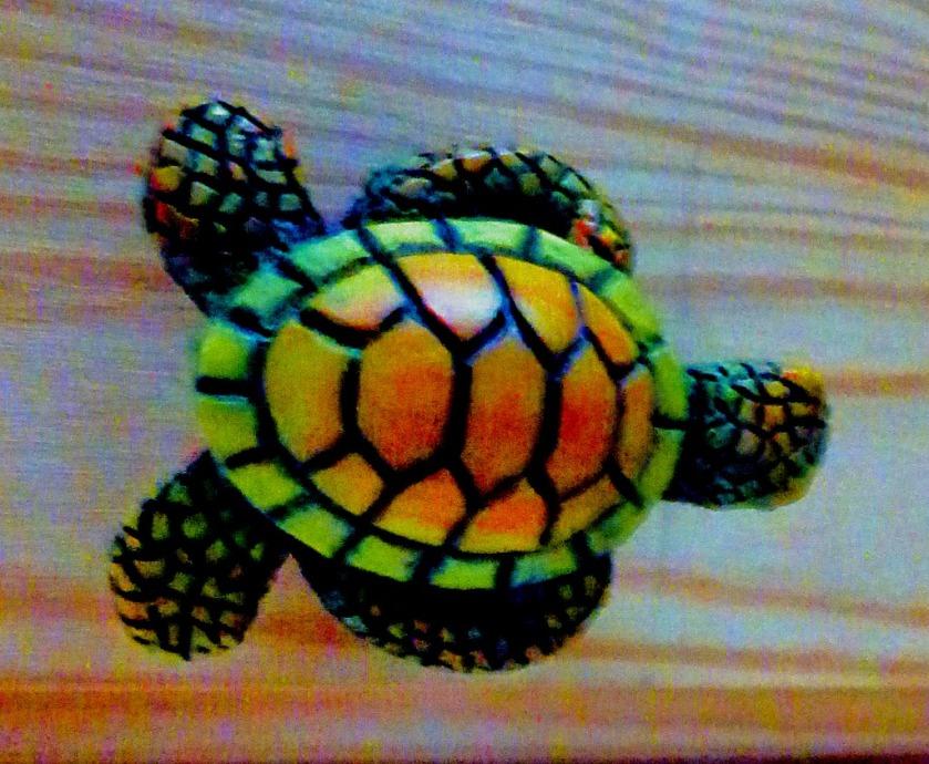 Model Tortoise