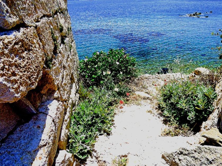 Walls and sea