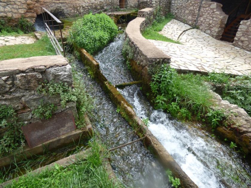 dual watercourse