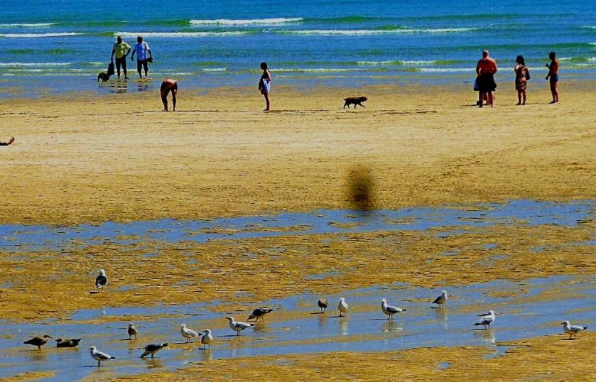 Beach scene, St Ives