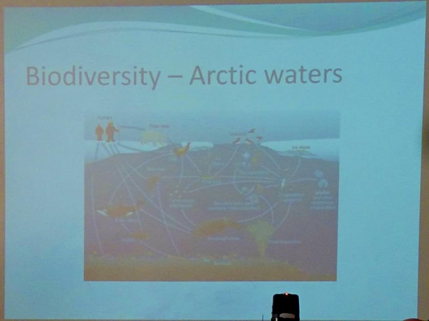 Biodiversity - Arctic Waters