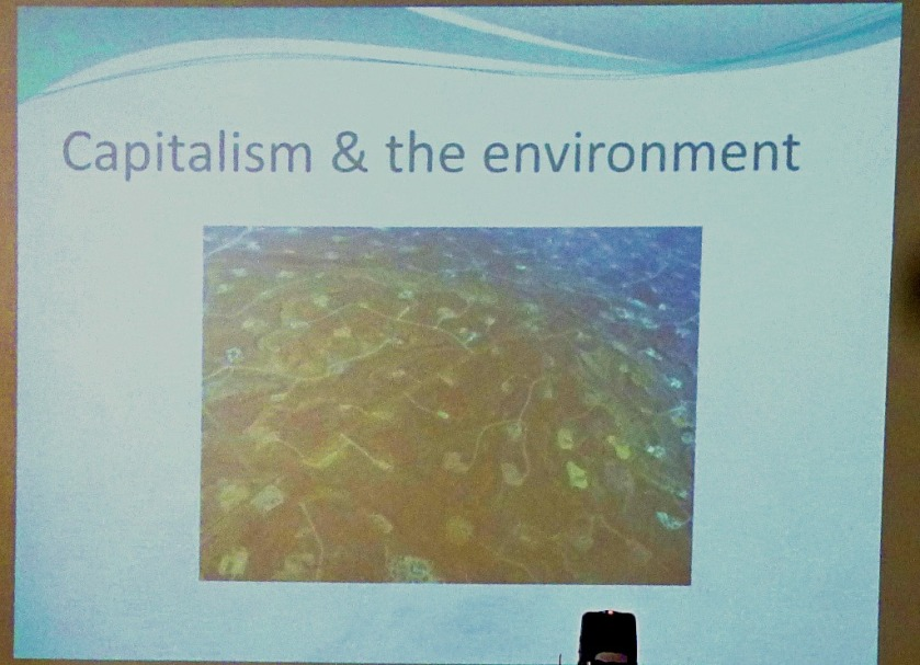 Capitalism and the Environment