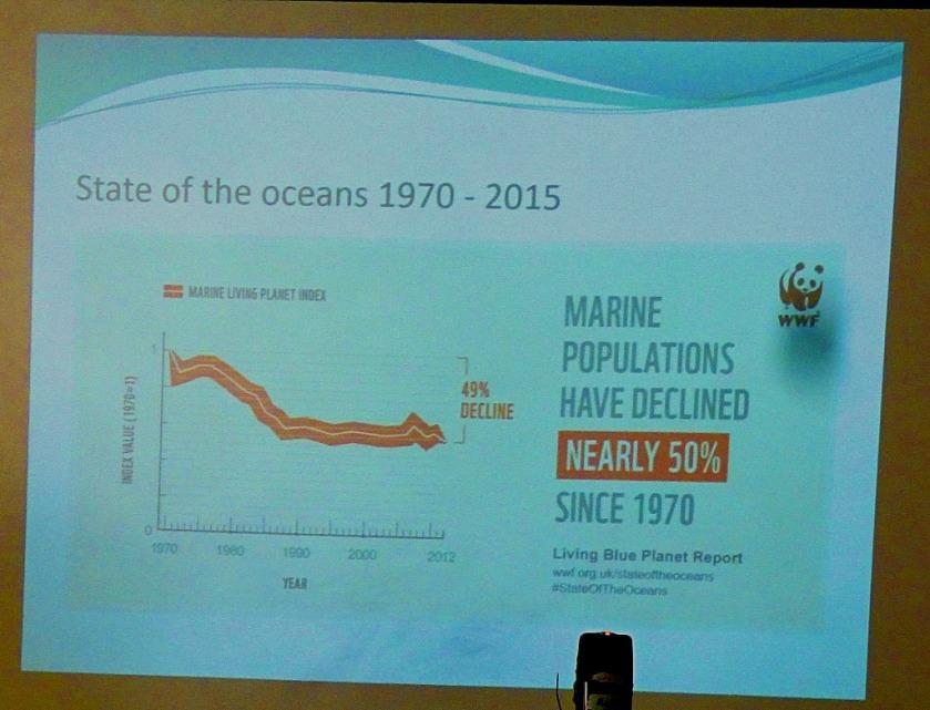 Decline in Marine populations II