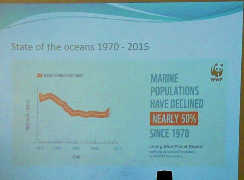 Decline in Marine populations