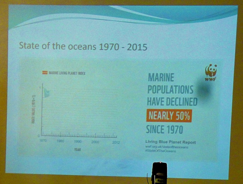 Decline in marine populations