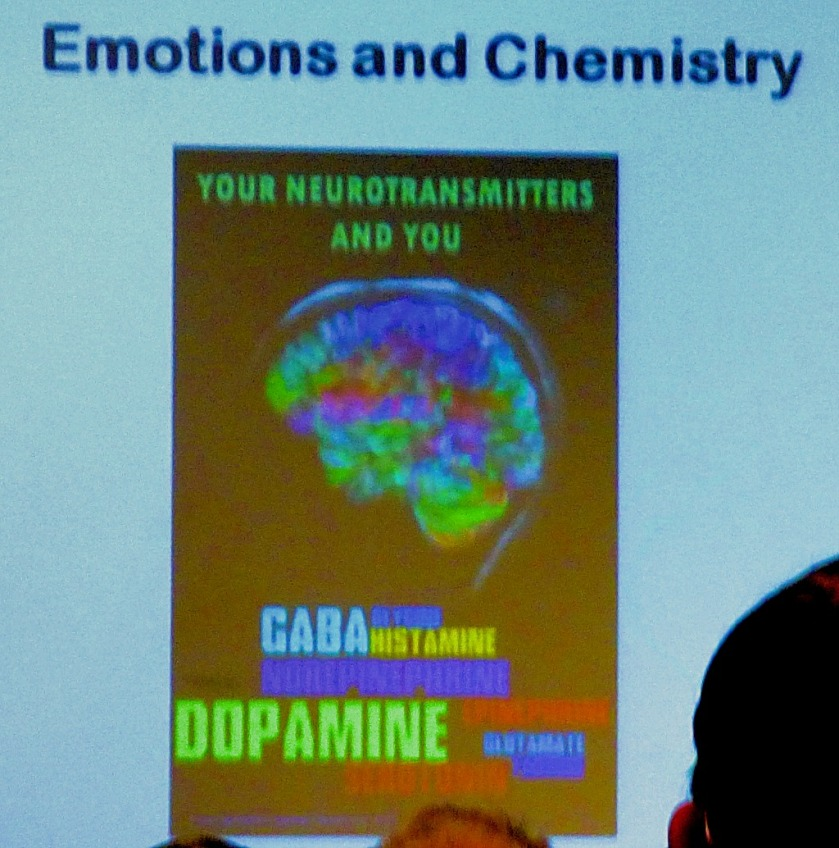 Emotions and Chemistry