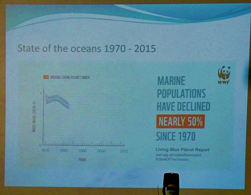 Marine population decline