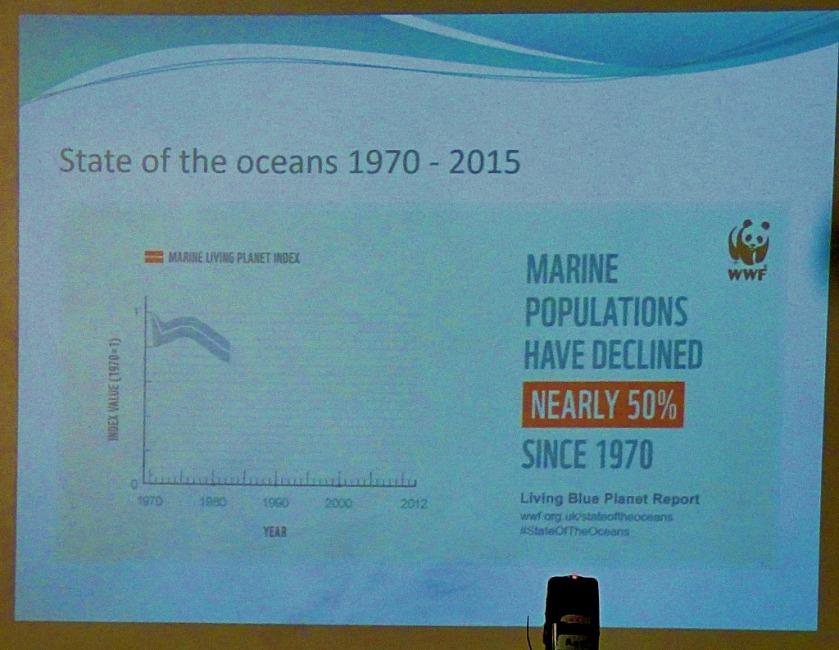 Marine population decline