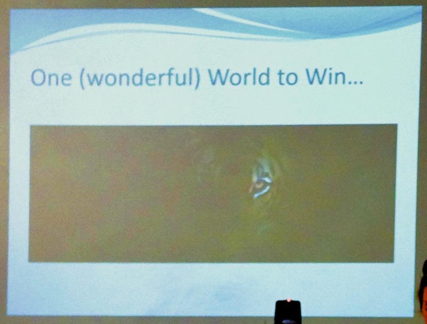 One (wonderful) world to win