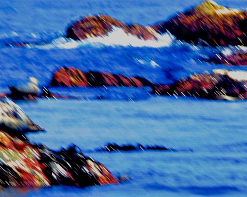 seal rocks II