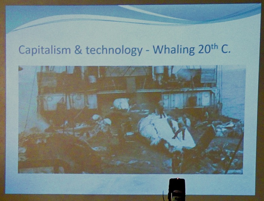 Whaling 20th Century