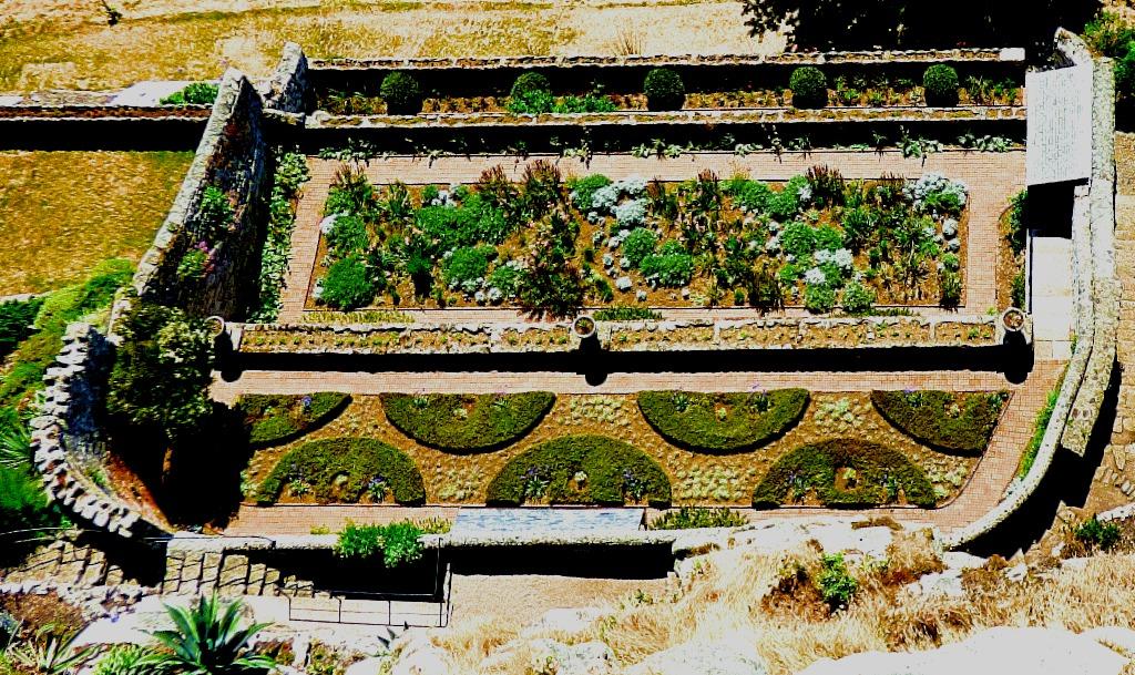 Garden from above III
