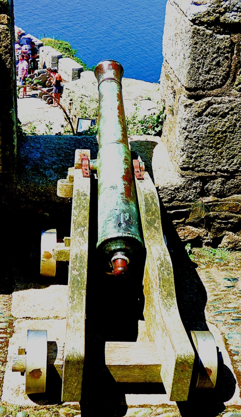 Mini cannon