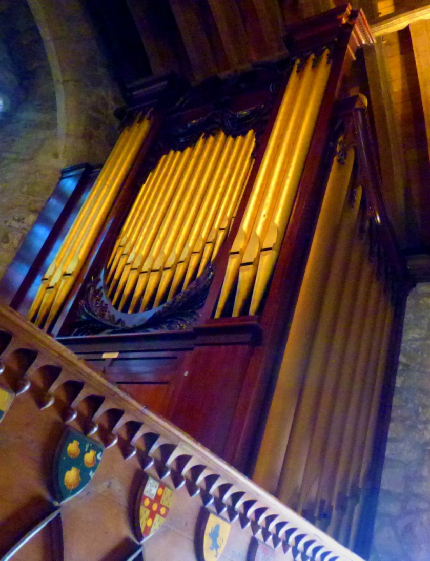 Organ close-up 1