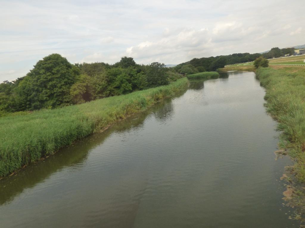 River near Newton Abbot