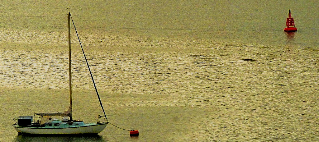 Yacht and buoy