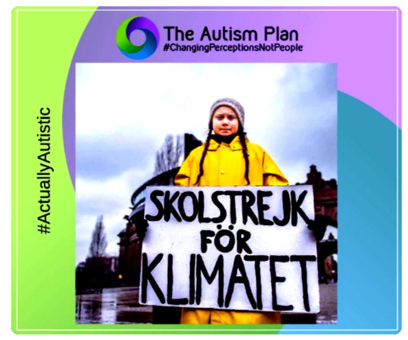 Autism Plan