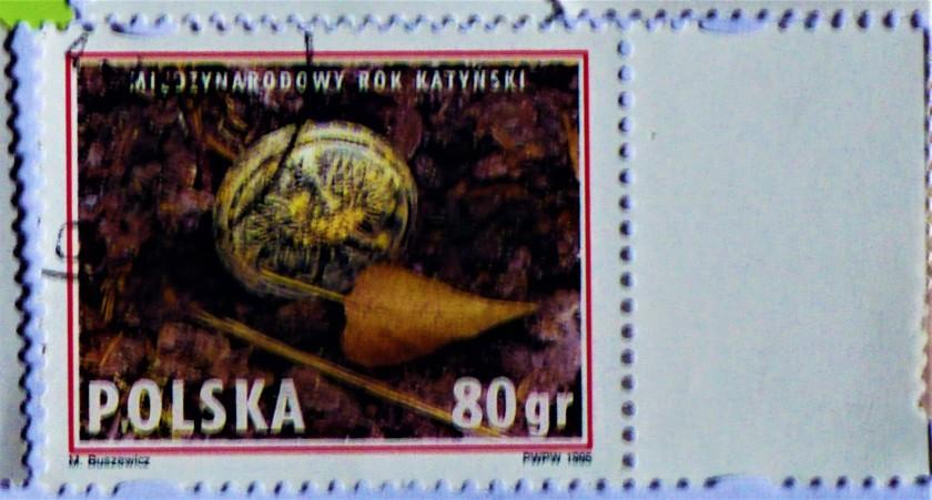P1230953 (2)